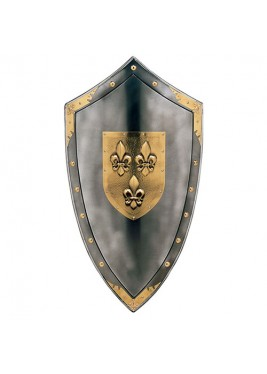 Triangular shield Anjou